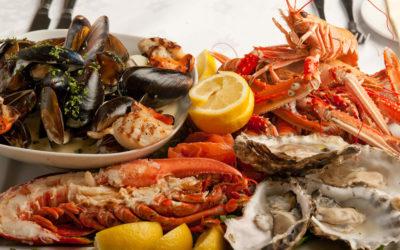 مشروع مطعم سمك ومأكولات بحريه في السعودية دراسة جدوى جاهزة