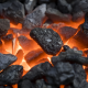 مشروع مصنع فحم صناعي نظرة شاملة حول المشروع
