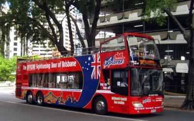 مشروع باص وحافلة جولات سياحية كيف تبدأ مع دراسة جدوى