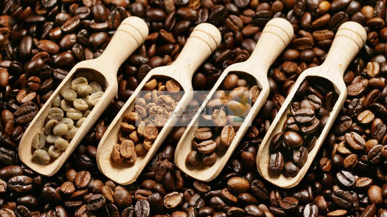 مشروع قهوة مختصة في السعودية كيف تبدأ وتنافس كبرى الماركات المتخصصة